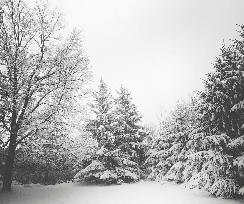 Schnee und Autofahren