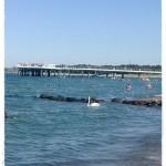 Runde Strandtücher an der Ostsee