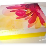 """""""Schön für mich"""" Box Juni 2014"""