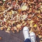 Stimmungstief im Herbst. Was nun?