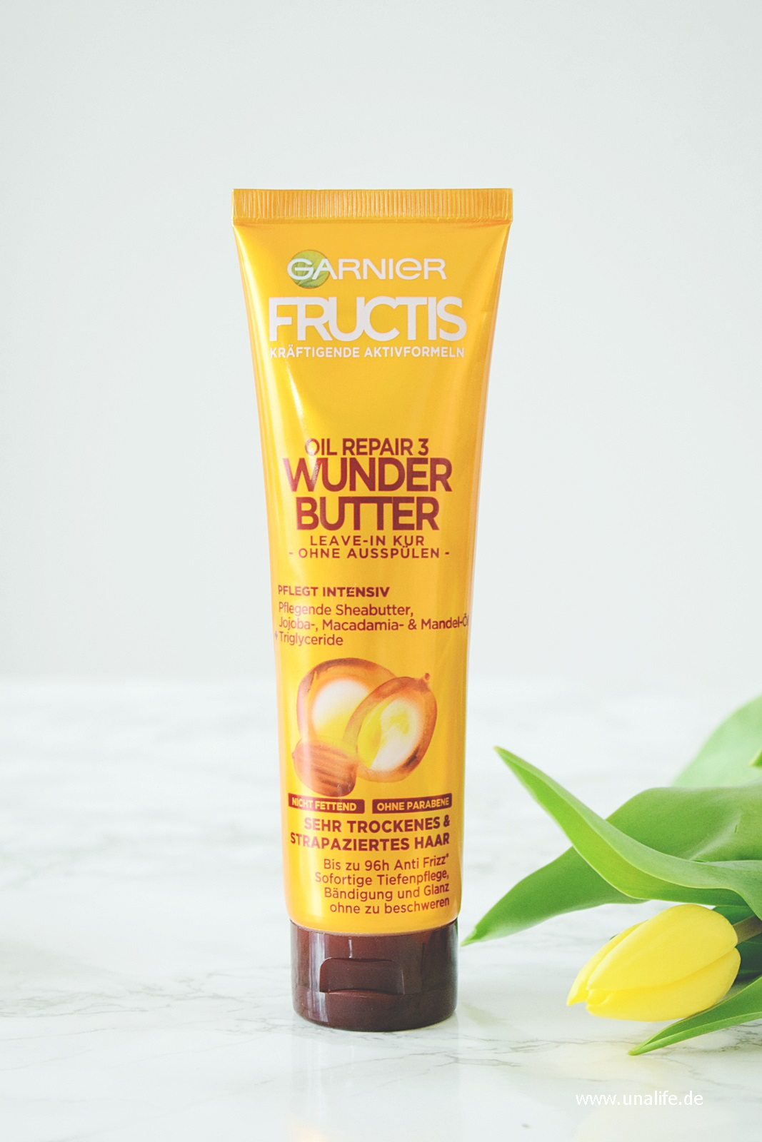Garnier Fructis Leave in Kur