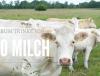 BIO Milch