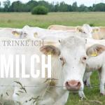Ende der Kuh-Challenge und der Grund warum ich jetzt nur BIO Milch trinke