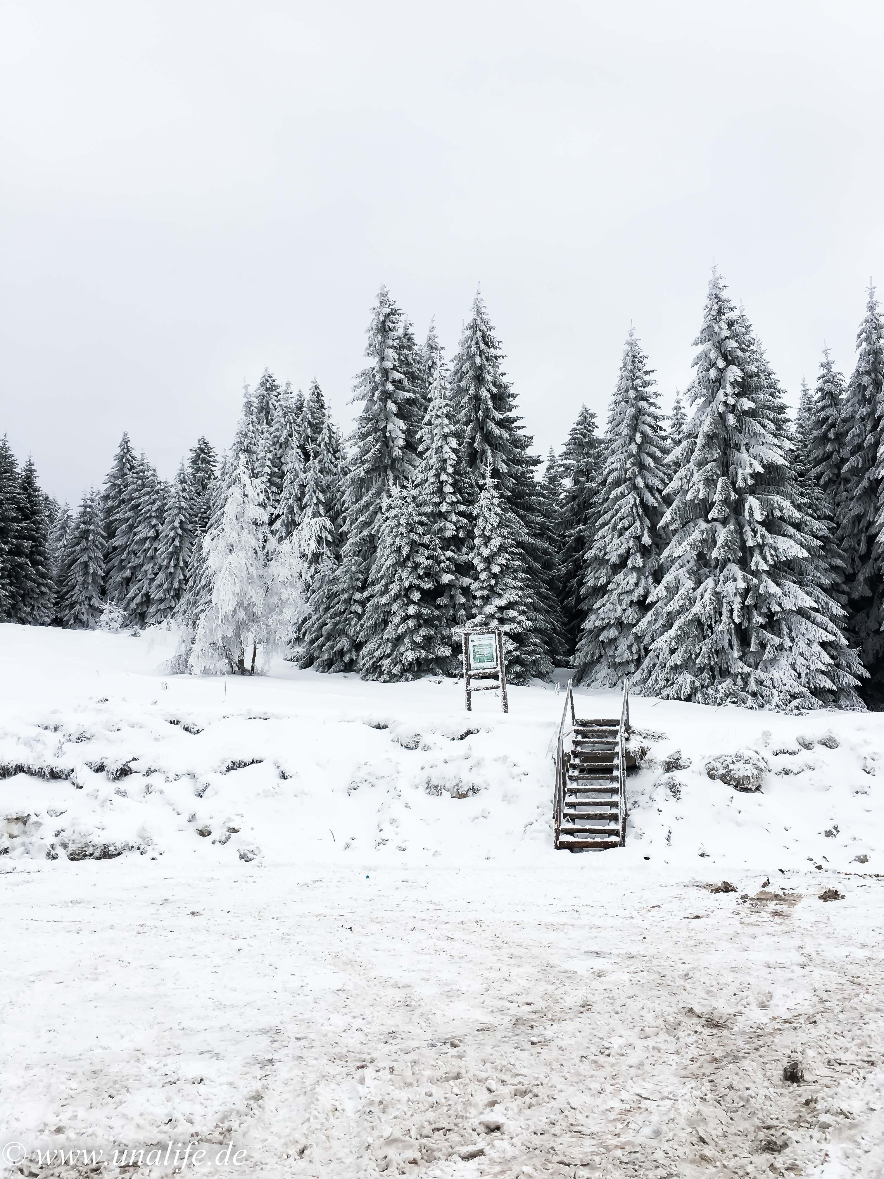 Kopaonik Skiurlaub Familie