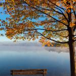Warum Herbst gut für die SEELE ist …