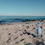 Ach du schönes Meer! Ein Ausflug nach Fehmarn mit Rheinfels Quelle