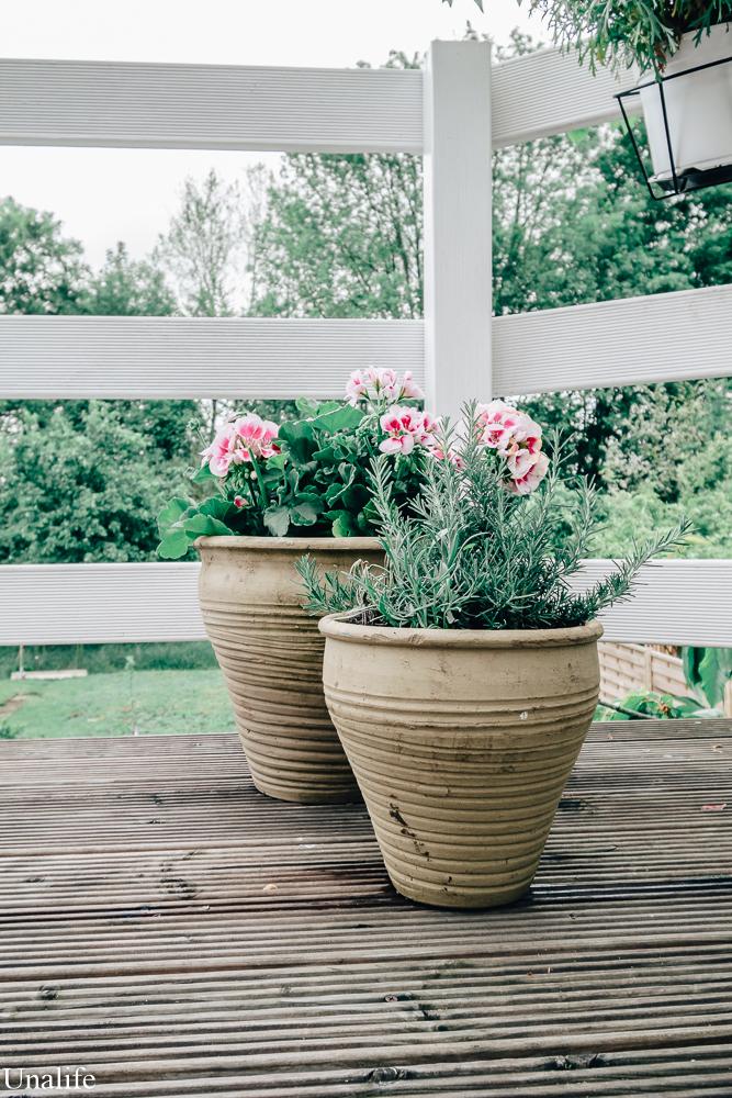 Blume Terrasse