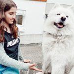 SAMMYS ERSTE LIEBE / DAS FUTTERHAUS + GEWINNSPIEL